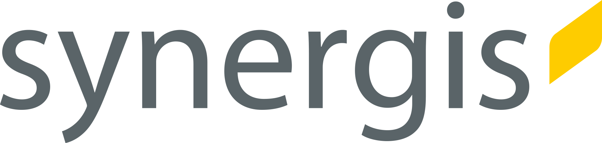 logo synergis.png